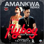Video: Flyboy ft. Skales – Amankwa Remix