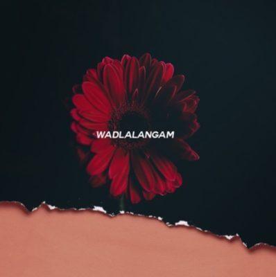 Flex Rabanyan ft. Bhuga Bhengu – Wadlala Ngam' (Xoli)