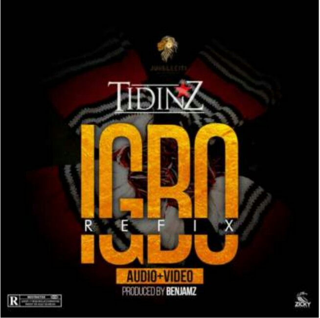 AUDIO & VIDEO: Tidinz – Igbo | Igbo Reflix