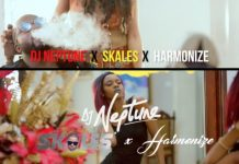 [Video] DJ Neptune ft. Skales & Harmonize – Do Like I Do Artwork