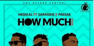 Medikal ft. Sarkodie & Paedae – How Much (Remix) Artwork