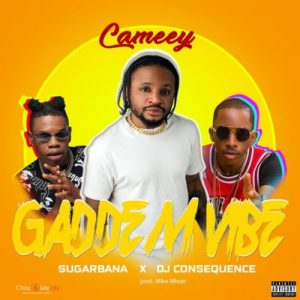 Cameey ft. Sugarbana & DJ Consequence – Gaddem Vibe Artwork