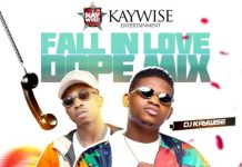 [Mixtape] DJ Kaywise – Fall In Love Dope Mix Artwork
