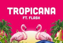 Show Dem Camp ft. Flash – Tropicana Artwork