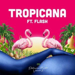Show Dem Camp ft. Flash – Tropicana Artwork
