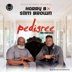 Harry B ft. Slim Brown – Pedigree