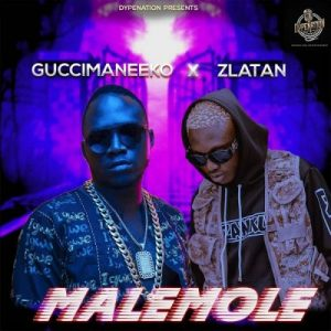 Guccimaneeko ft. Zlatan – Malemole (Prod. Sarz)