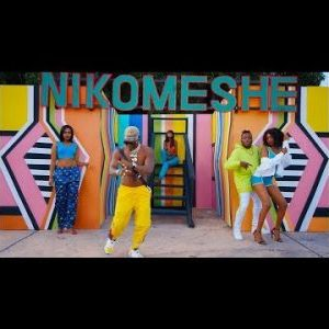 [Video] Dully Sykes ft. Harmonize – Nikomeshe