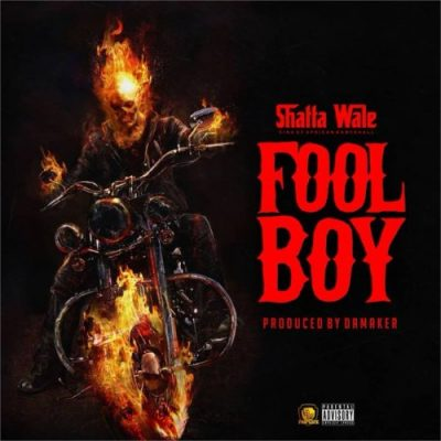 Shatta Wale Fool boy