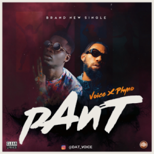 voice ft phyno pant