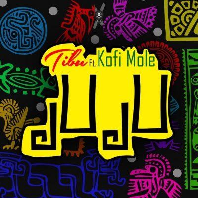Tibu ft. Kofi Mole – Juju